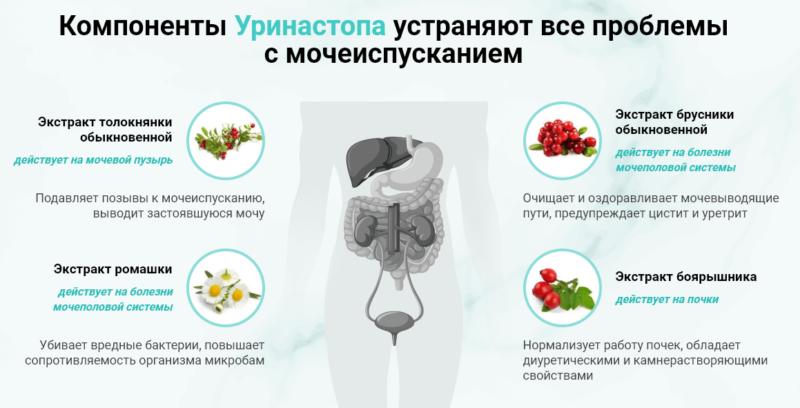 Состав Уринастоп